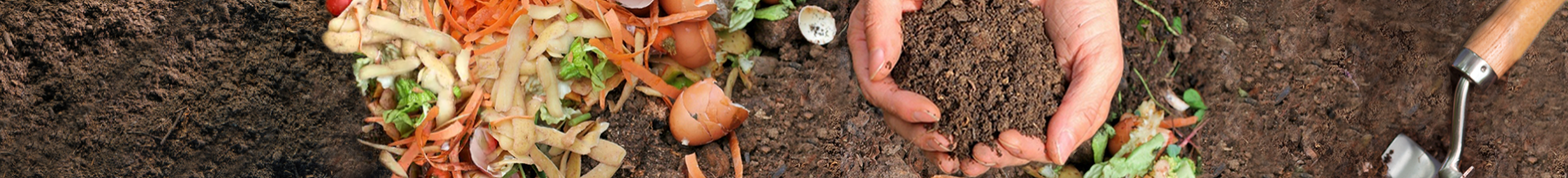 garden bed with vegetable peelings and hands holding soil