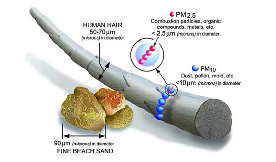 Image comparing the size of particle pollution to a human hair