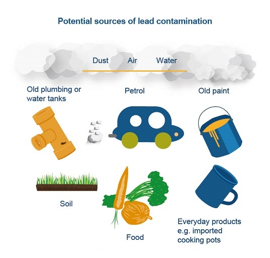 Potential sources of lead contamination - Dust, Air Water. Old plumbing or water tanks, petrol, old paint, soil, food, everyday products eg imported cooking pots.