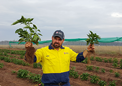 man in field holding up plants
